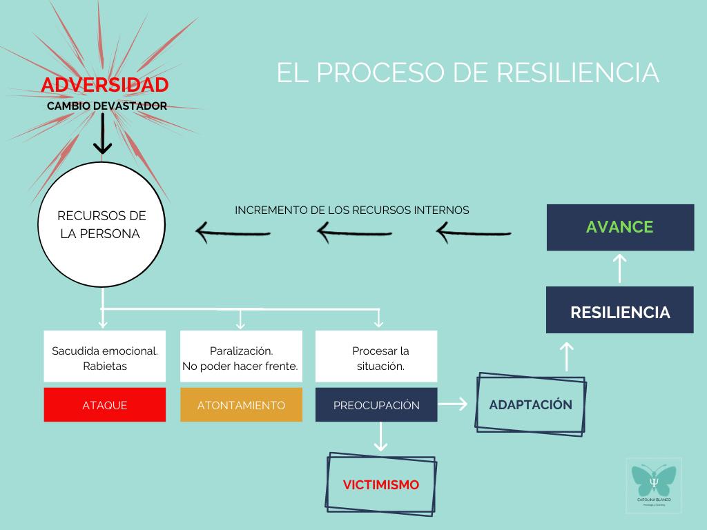 Diagrama Resiliencia